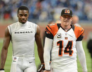 Cincinnati Bengals v Detroit Lions