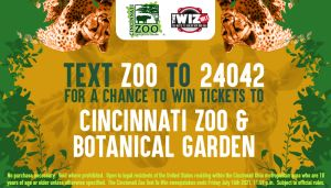 The Wiz ZOO Text To Win Graphics